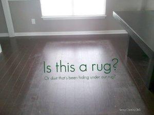 Rug Dust?